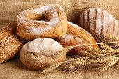 picture of whole-wheat  - Whole grain wheat bread with wheat ears - JPG