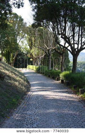 Camino De Santiago (way Od St. James). Spain