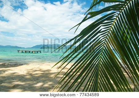 Beautiful Tropical Beach At Island