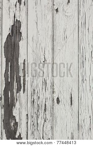 Grunge Wood Wall Background With White Paint