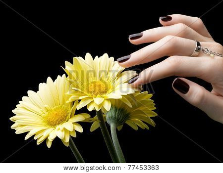 Manicured Nail With Black Matte Nail Polish. Manicure With Dark Nailpolish And Flower Isolated On Bl