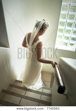 Bride Decending Stairs