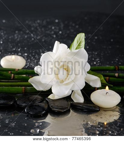 Spa still life with gardenia and bamboo grove , candle