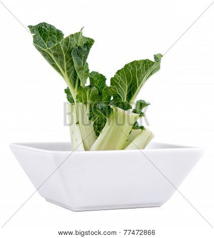 regrow bok choy technique in bowl