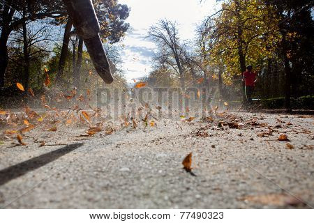 Leaf Blower In Action