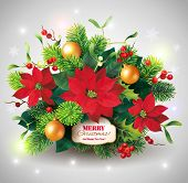 picture of poinsettias  - Christmas card with fir and poinsettia decoration - JPG