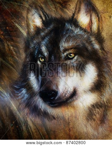 Wolf Painting, Color  Background On Paper , Multicolor Illustration, vintage picture
