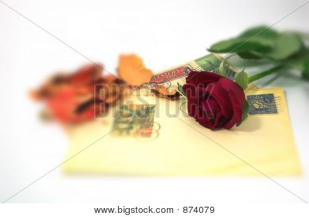 Letter And A Rose With Blur Effect