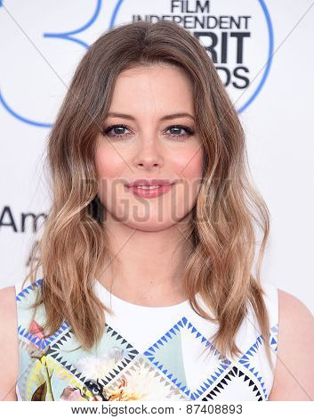 LOS ANGELES - FEB 21:  Gillian Jacobs arrives to the 2015 Film Independent Spirit Awards  on February 21, 2015 in Santa Monica, CA