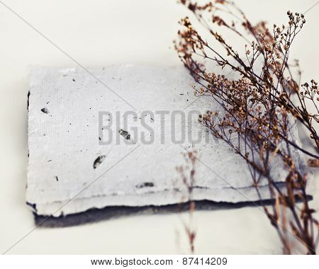 Christmas background with handmade paper and beautiful herbs, christmas decoration on a white backgr
