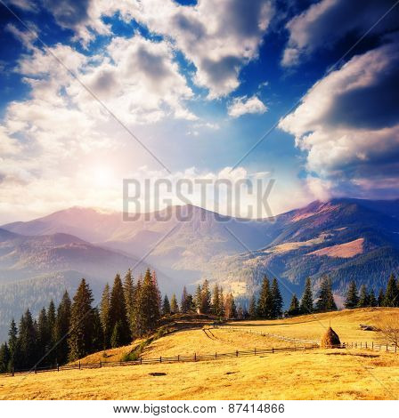 Fantastic foggy day and bright hills by sunlight. Dramatic morning scenery. White cumulus clouds. Carpathian, Ukraine, Europe. Beauty world.