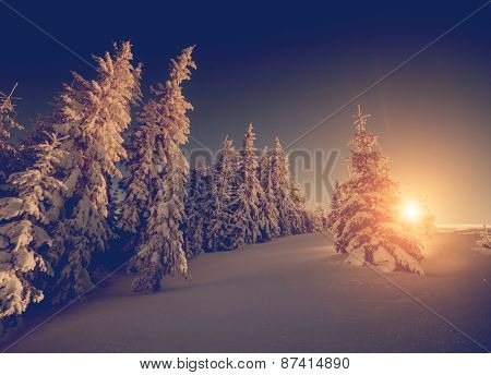 Majestic winter landscape glowing by sunlight in the morning. Dramatic wintry scene. Carpathian, Ukraine, Europe. Beauty world. Retro and vintage style, soft filter. Instagram toning effect.