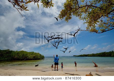 Unidentified tourists enjoying watching seabirds in Playa de los Alemanes, German beach, Galapagos I