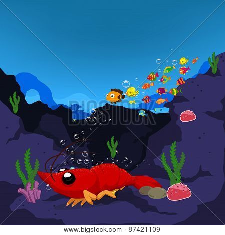 lobster is under a sea water