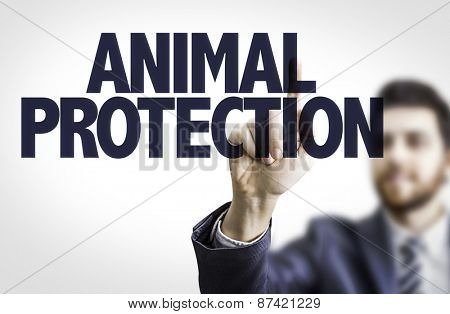 Business man pointing the text: Animal Protection