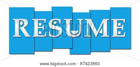 Resume Blue Stripes