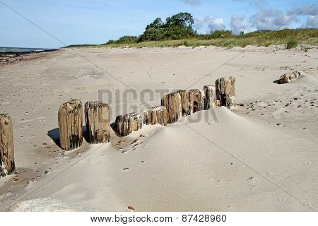 Bridge Remains On The Sand