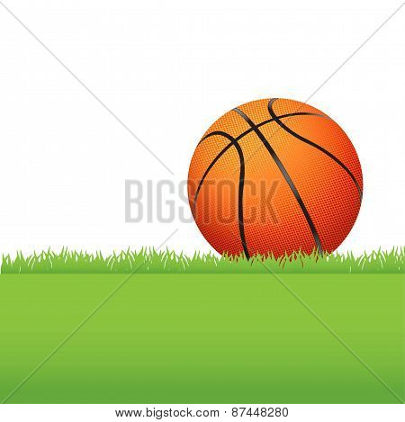Basketball Sitting On Green Grass Illustration