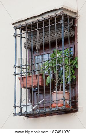 Barred Window With Houseplants And A Watering Can
