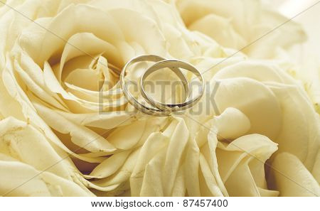 Background For Wedding With Rings Lying On White Roses