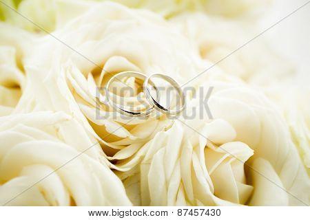 Macro Shot Of Two Golden Wedding Rings Lying On White Rose