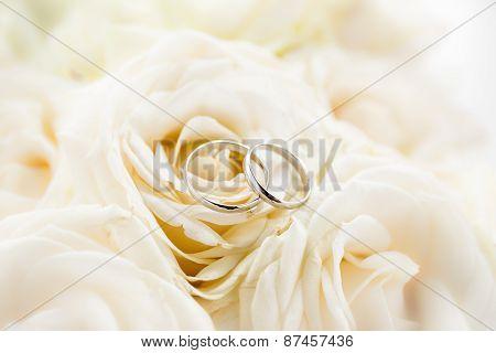 Macro Photo Of Two Platinum Wedding Rings Lying On White Roses