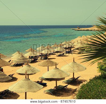 Beach Umbrellas On Sandy Beach, Egypt