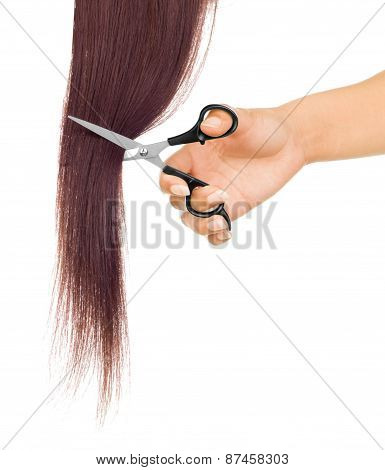 Scissors Cutting Lock Of Hair Isolated On White