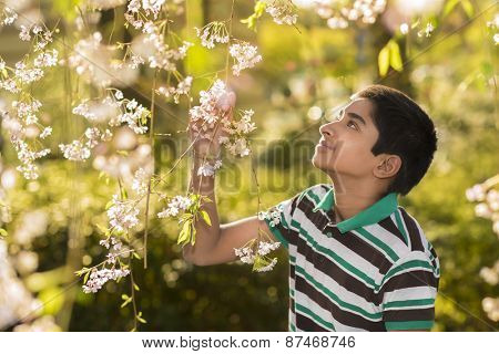 An handsome young teenager enjoying spring flowers