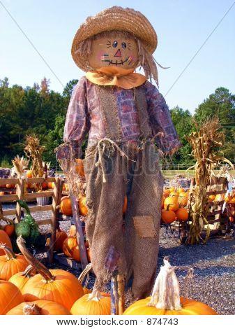 Big Scarecrow