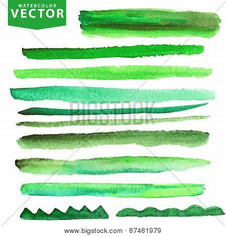 Watercolor brushes set.Green