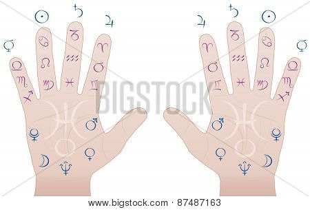 Astrology Palmistry Sections Hands