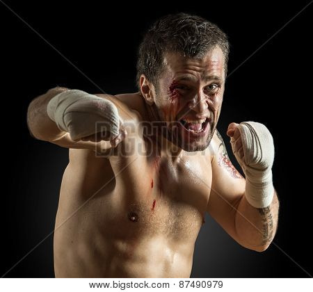 Portrait of aggressiv boxer in blood