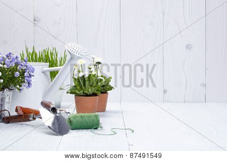 Plants and gardening tools on old white wood table