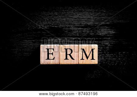Acronym Erm - Enterprise Risk Management Isolated With Copy Space
