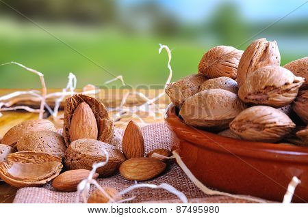 Group Of Almonds On A Table In The Field Front View