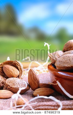 Group Of Almonds On A Table In The Field Vertical Composition