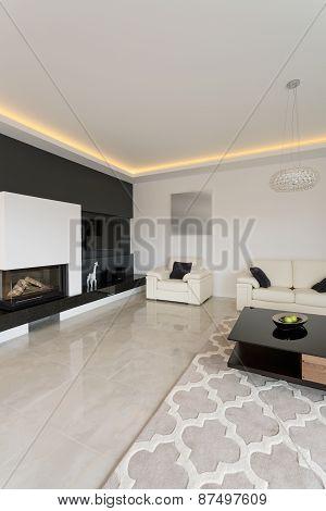 Black And White Designed Interior