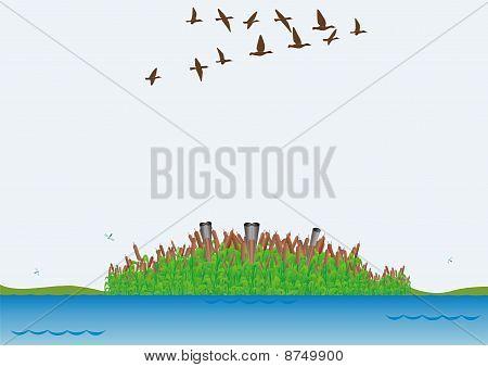 Jagd für Enten