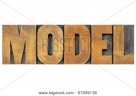 model word typography - isolated text in vintage letterpress printing blocks