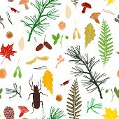 stock photo of pine cone  - vector seamless pattern with ink drawing forest objects - JPG
