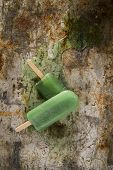 picture of popsicle  - Effect of melting in the heat of the all fruit popsicles - JPG