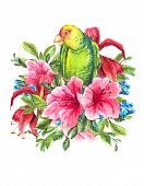 picture of parrots  - Watercolor Exotic Vintage Card with Blue berries - JPG