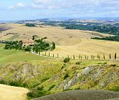 picture of senesi  - Crete senesi characteristic landscape in province of  - JPG