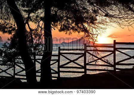 Sunset through wooden fence below pine trees in Sithonia