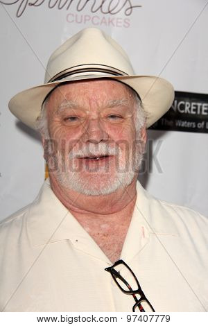 LOS ANGELES - JUL 29:  Brian Doyle-Murray at the
