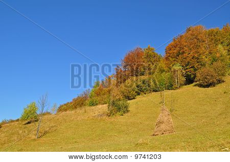 Haystack on an autumn hillside.