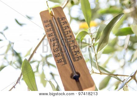Wood Thermometer