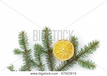spruce twig with dried orange slice on white background, backdrop