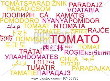 Background concept wordcloud multilanguage international many language illustration of tomato